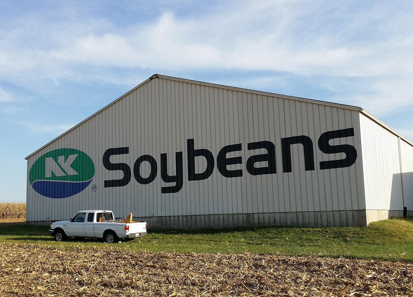 NK Soybean logo painting on barn