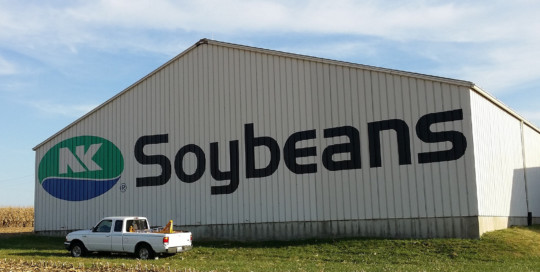 NK Soybean logo painting on barn
