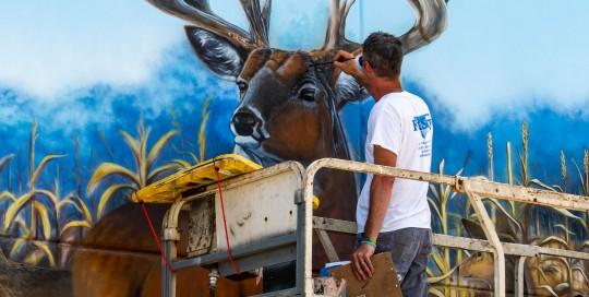 whitetail buck mural painting