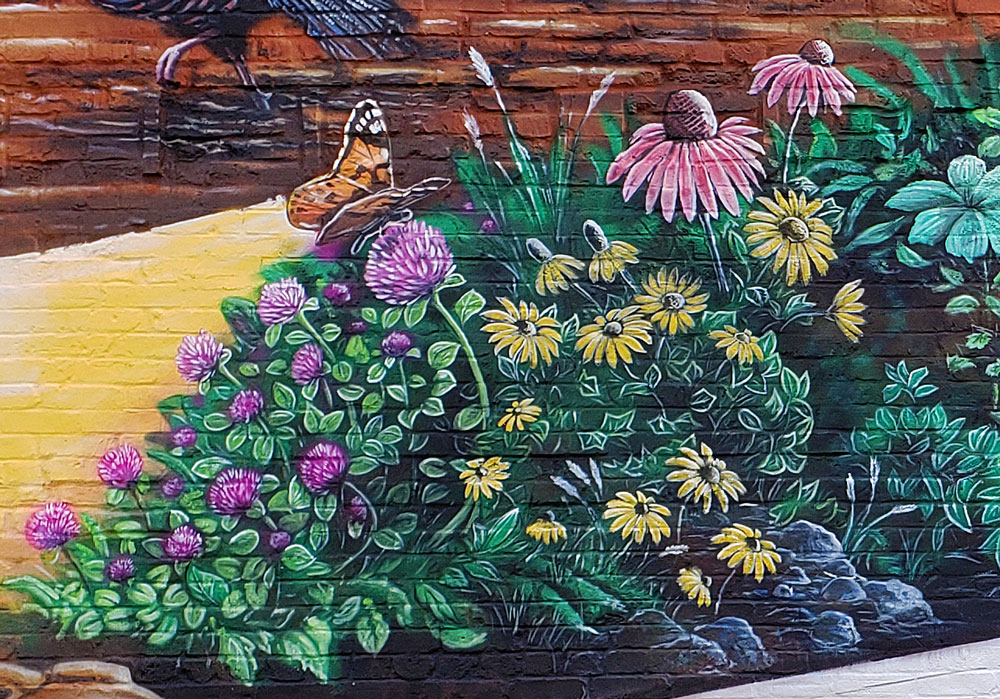 midwest clover flower mural painting