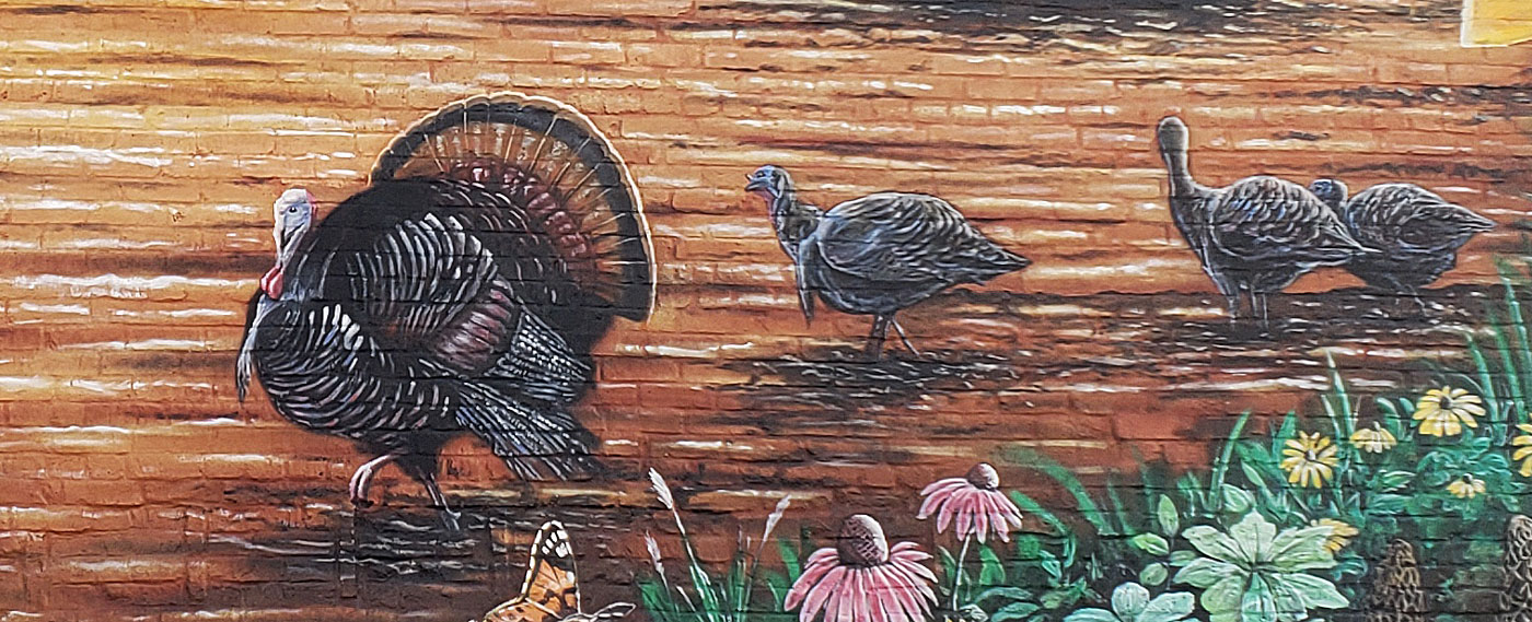turkey hunting mural