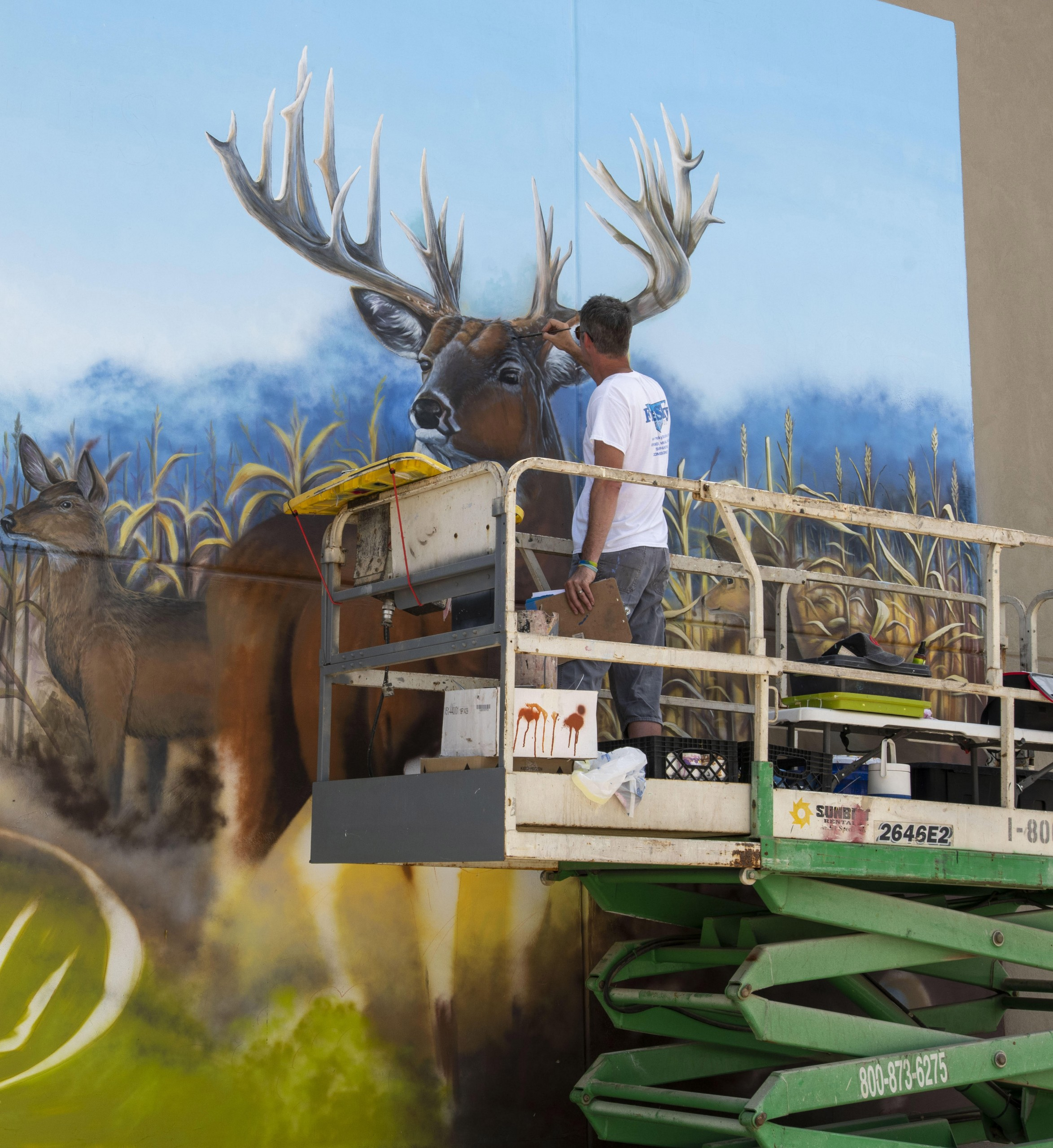 Troy Freeman painting whitetail buck mural painting